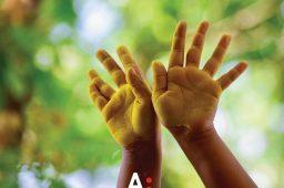 Tenho um relatório que indica que o meu filho é disléxico. O que posso fazer?